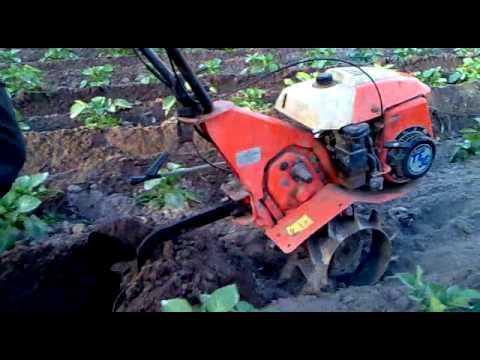 motoculteur kubota tf 20
